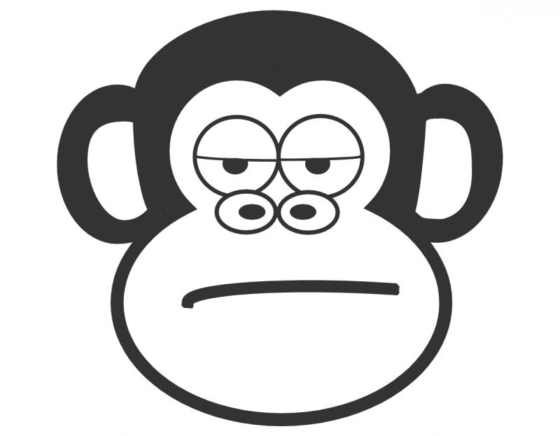 The Judgmental Monkey